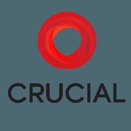 crucial hosting review